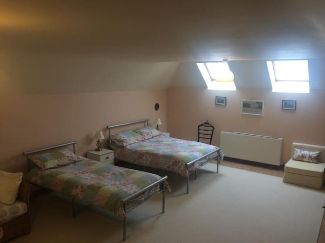 mid Wales , huge,spacious room LD15