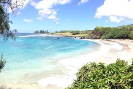 Lucy Fan Ohana - A Maui Gem!