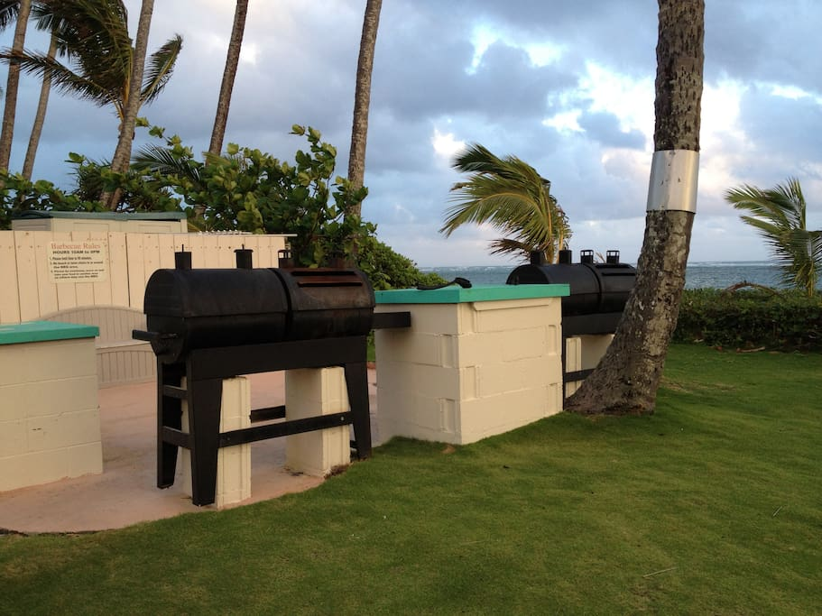 Barbecue area for your use