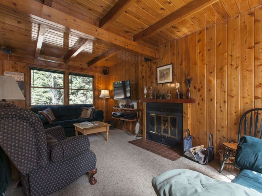Lark Landing Living Area Fireplace