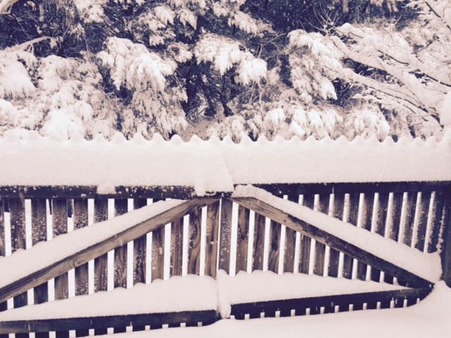 Snow on the front gates - August 2015