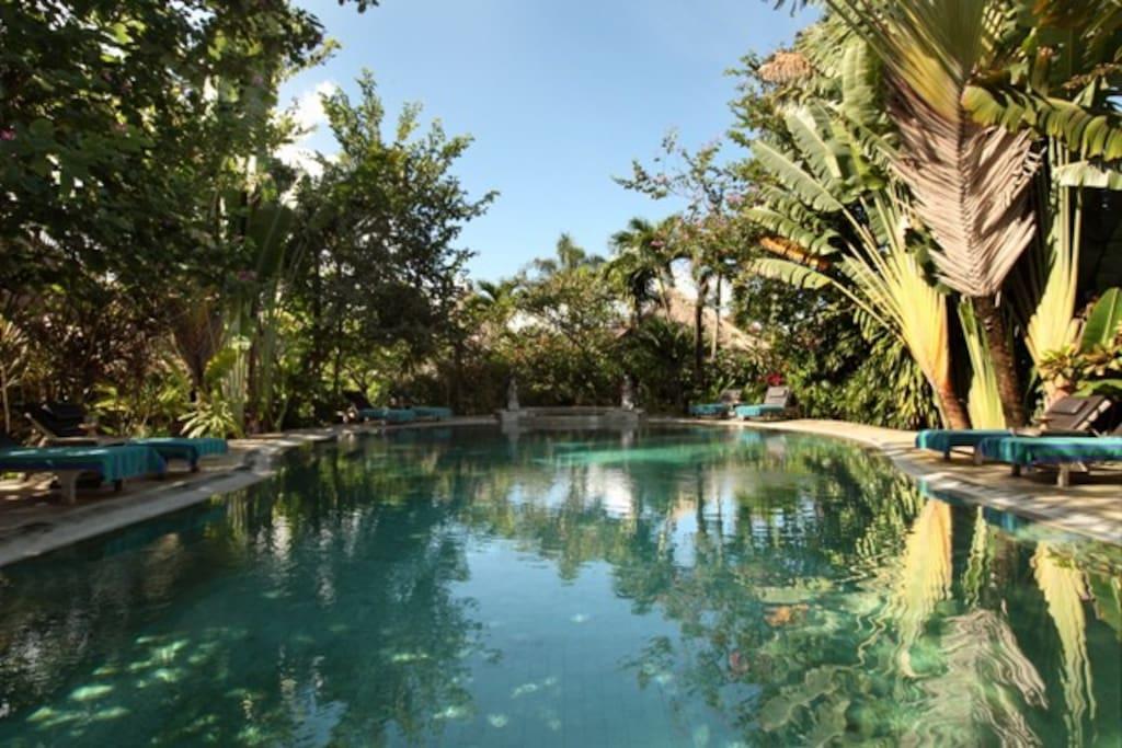 Main Pool of Bungalow
