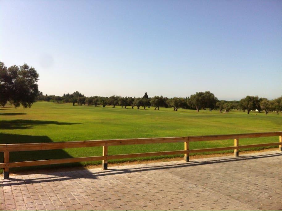 Campo de Golf Campano