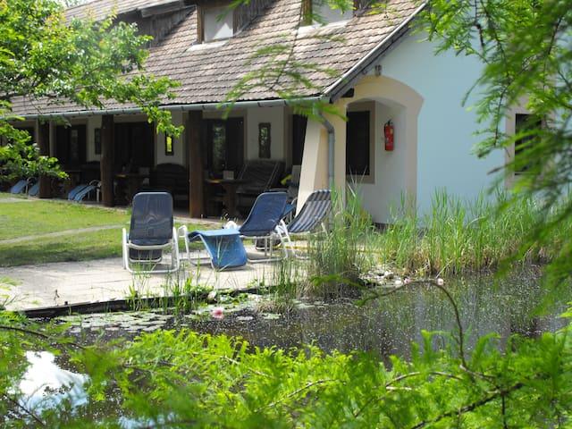 Csend és nyugalom a természetben - Hévíz - Sommerhus/hytte