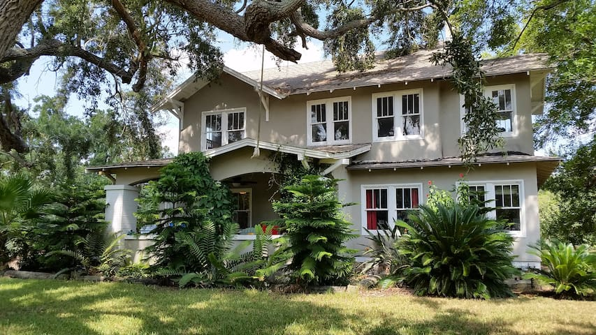 Old farm house, great birding - Harlingen - House