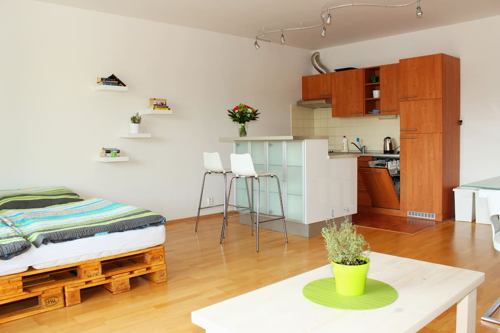 Living room with kitchenette - dish washer, microwave, stove/oven, fridge, free coffee and tea