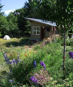 Eco-cabin, Twisted Vine Farm - Duncan