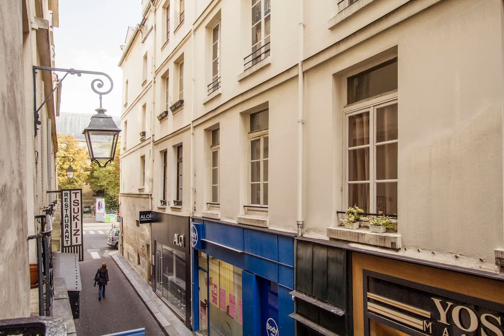 View from the window on the boulevard St Germain, close but far enough to avoid the noise!