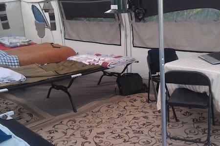 Shared Tent w/Flapjacks & Coffee - Brushton