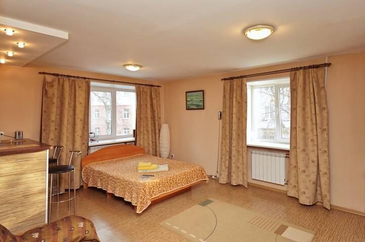 Апартаменты в центре города - Омск - Apartment