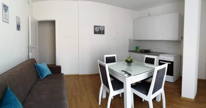 Petroski Apartment2