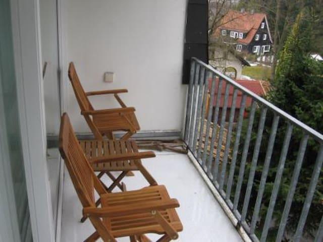 Ferienwohnung Rehberg in Braunlage - Braunlage - Apartamento