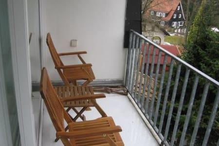 Ferienwohnung Rehberg in Braunlage - Appartement