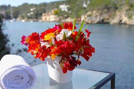 PRIVILEGED PLACE WITH PRIVATE SEA - Cala Figuera