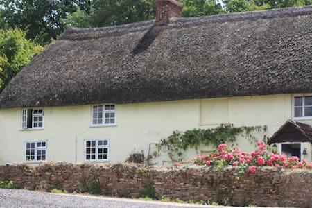 Bowhayes Farm Bed and Breakfast - Culmstock