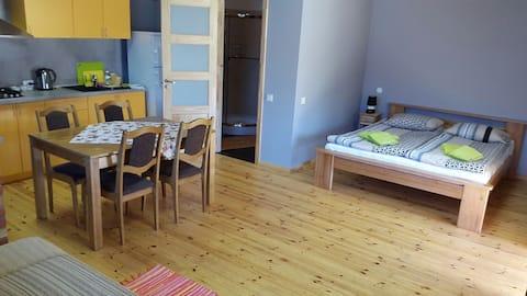 Cozy studio in Melnsils
