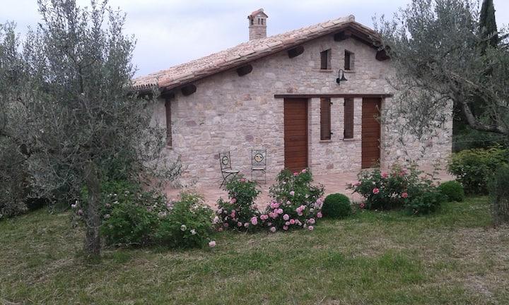 Relax in Umbria!