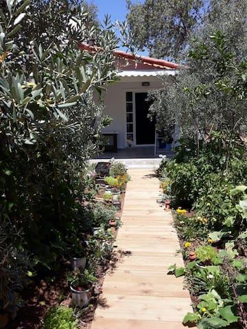 Müstakil Bahçeli ev