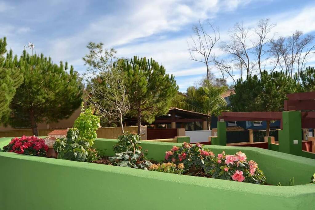 Doubleroomyoga massage organic food casas en alquiler en - Casas en torremolinos ...