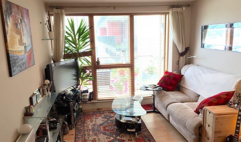 Comfy modern apt in great location! - Dublin 8 - Byt