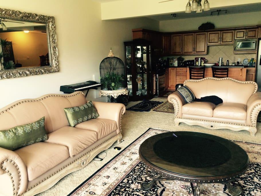Elegantly furnished family room