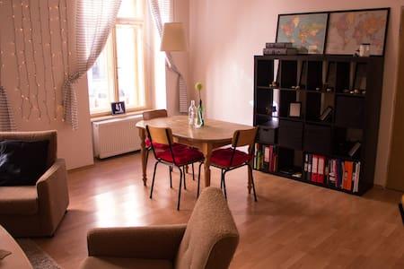 Clean apartment in Prague center