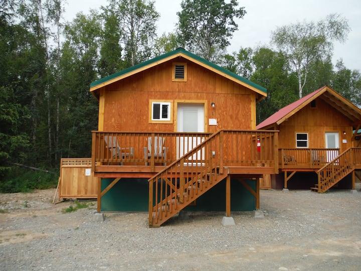 TLC Cabin 1 near Talkeetna Lakes!