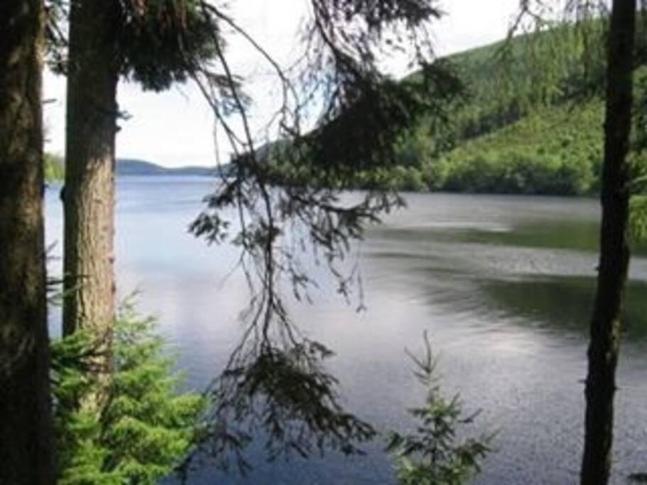 Nearby Lake Vyrnwy.