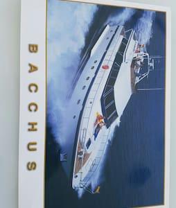 Bacchus - Marbella - Boot