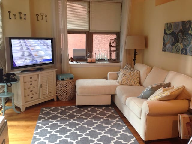 Cozy Downtown Loop Near River with Balcony & Cats