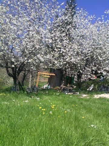 Eremo agricolo di montagna - Lezzaruole - Casa