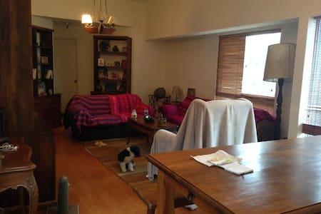 Single room in Miraflores