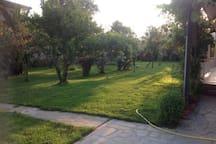 Stroll through the garden at your leisure.