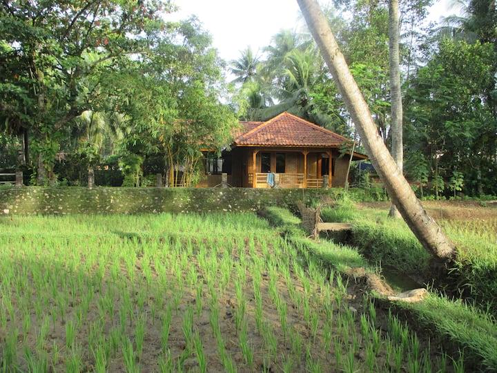 Villa Kambodja