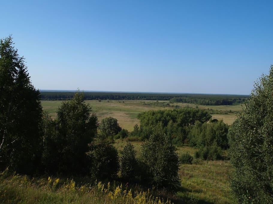 Панорама природы вокруг деревни