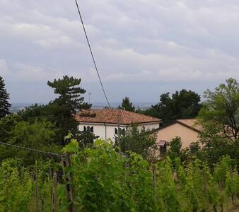 Una camera tra i vigneti - Tortona - Bed & Breakfast