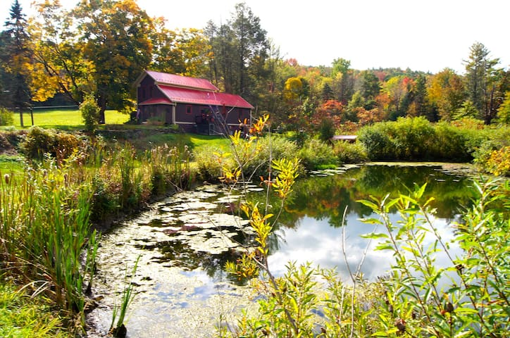 Twin Ponds, Pet Friendly Vacation Rental, 20 acres - Harding