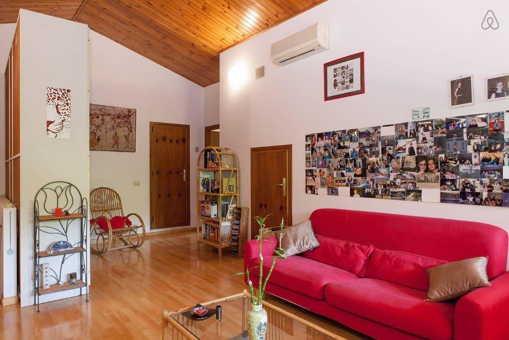 Mansarda privata tra modena e carpi case in affitto a for Stanze in affitto modena