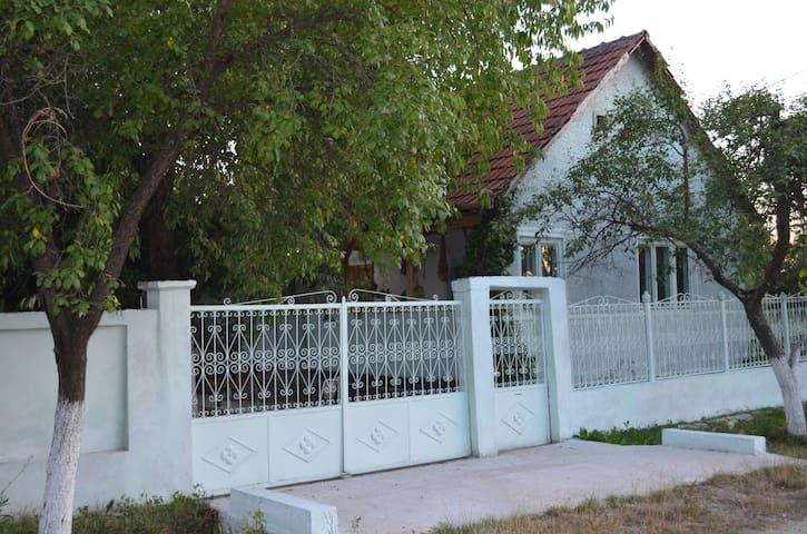 Rustic&quiet house in Transylvania - Șilindia - บ้าน