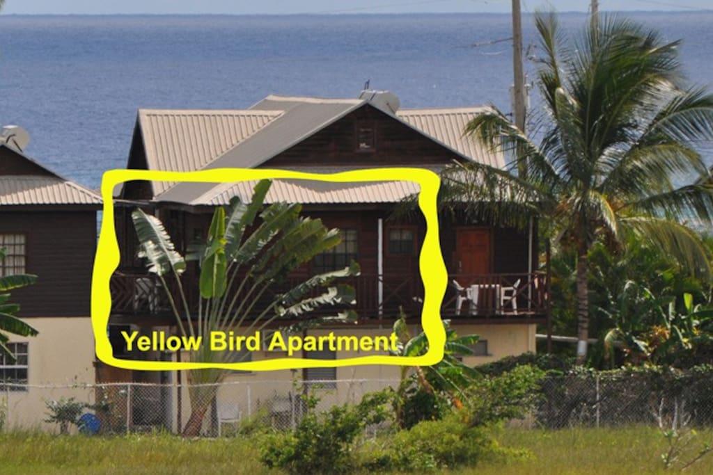 Yellow Bird Apartment