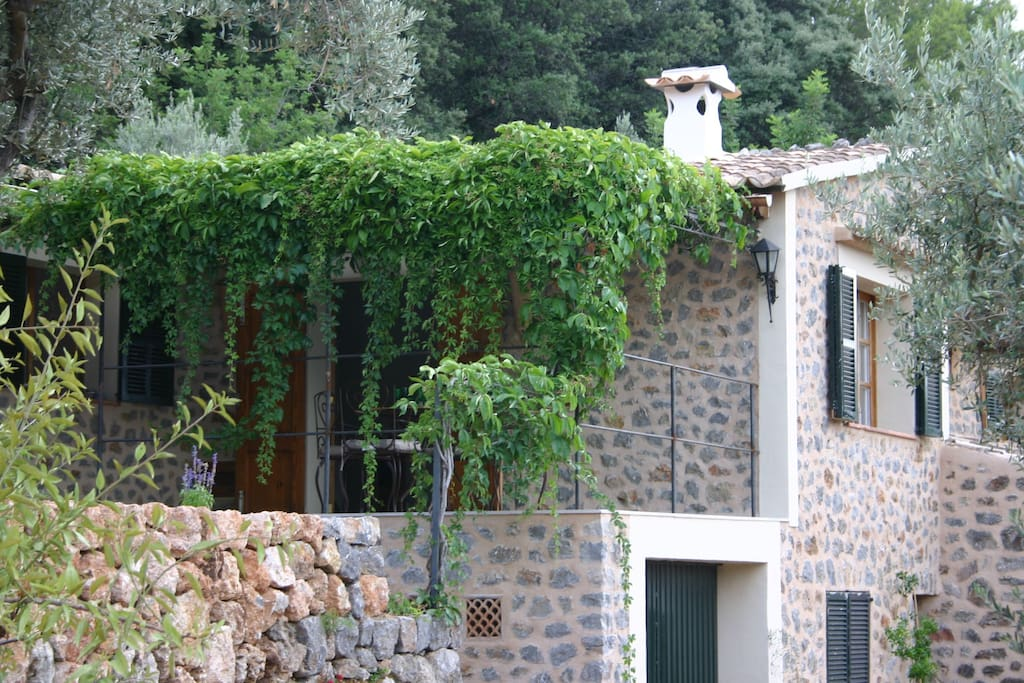 Stone house with vine-covered terrace