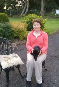 PURRFECT HAVEN Tranquil and cosy - Longford - (ukendt)