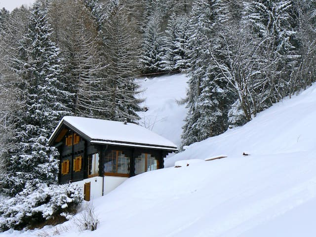 Exciting Ski-in / Ski-out chalet at high altitude - Nendaz - House