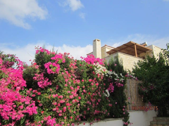 Elegant ALOE villa, pool, beach, garden, Rethymno