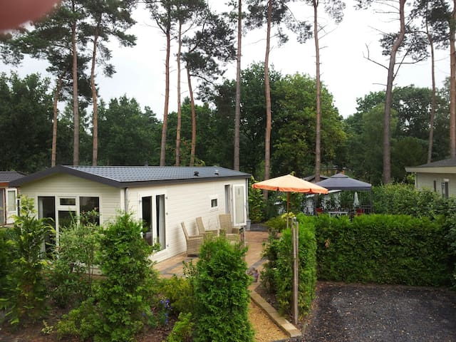 Enjoy the forest(rents only weeks) - Lunteren - Chalet
