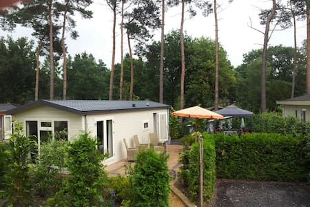 Enjoy the forest(rents only weeks) - Lunteren