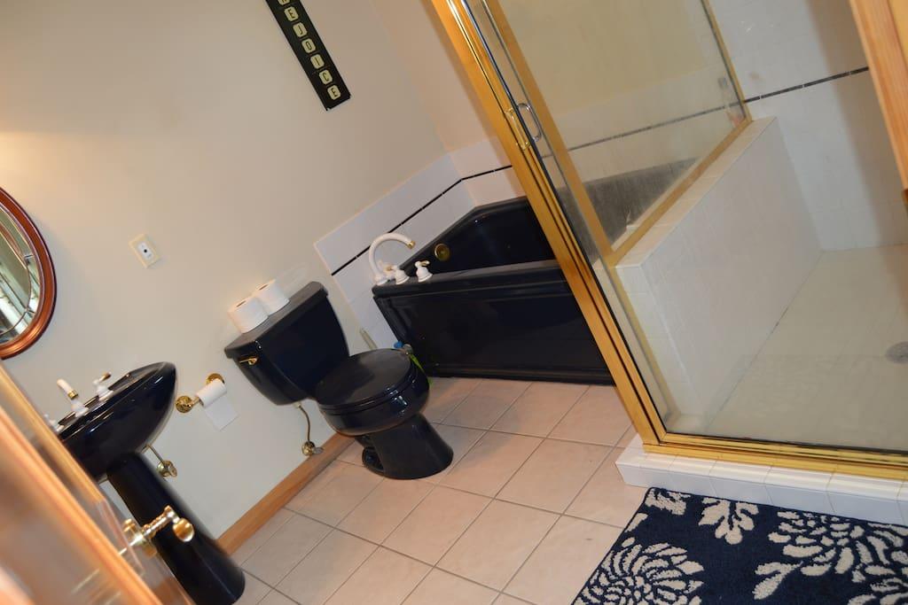Master Bathroom, jet tub.
