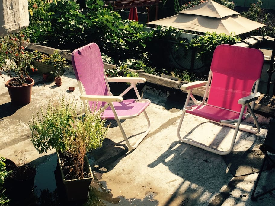 Private rooftop with sunbathing chairs