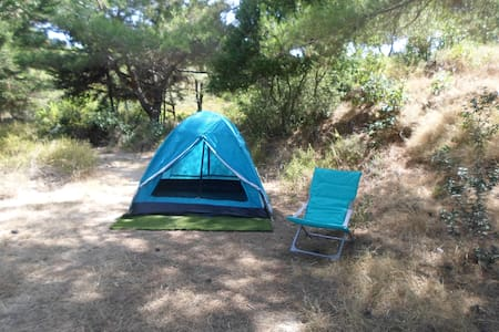 Camping Tent inside the  forest - Theologos - Çadır
