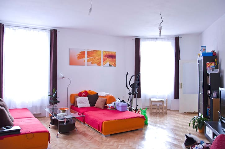 Lovely 3+1 BD Flat Brno Town center - Brno - Apartemen
